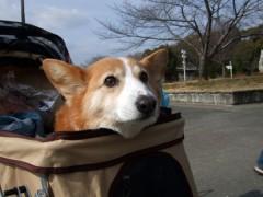 2012年3月3日鶴見緑地で…