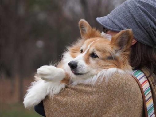 抱っこっこのしゅうくん気持ちいいねー